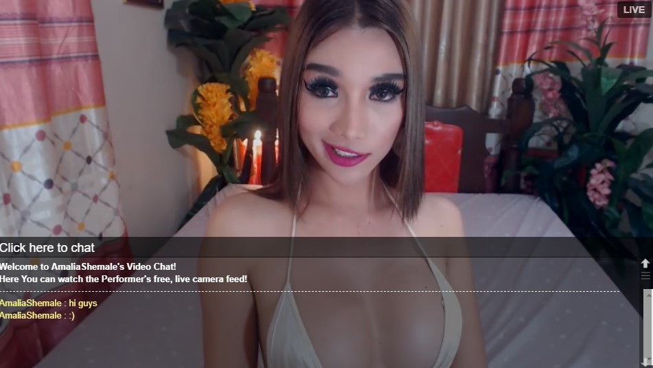 Find cute shemale for sex